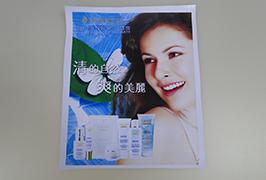 ПВХ-баннер, напечатанный на экологически чистом растворителе-принтере 3,2 м (10 футов) WER-ES3201