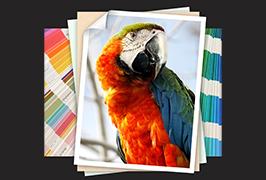 Фотобумага, напечатанная на 1,7 м (6 футов) экологически чистым растворителем WER-ES1802